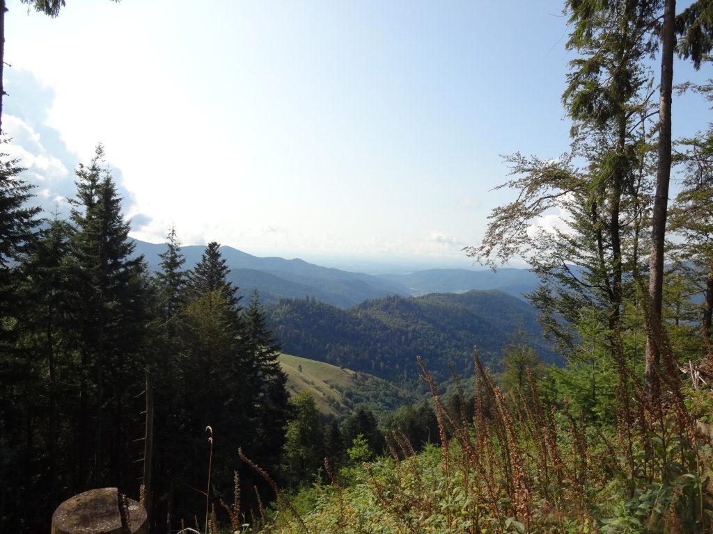 Blick über die hügelige Landschaft
